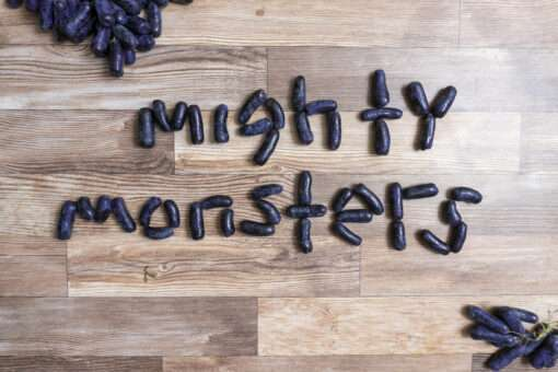 mighty monster grapes